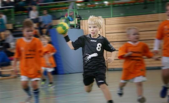 Handball Spielfest