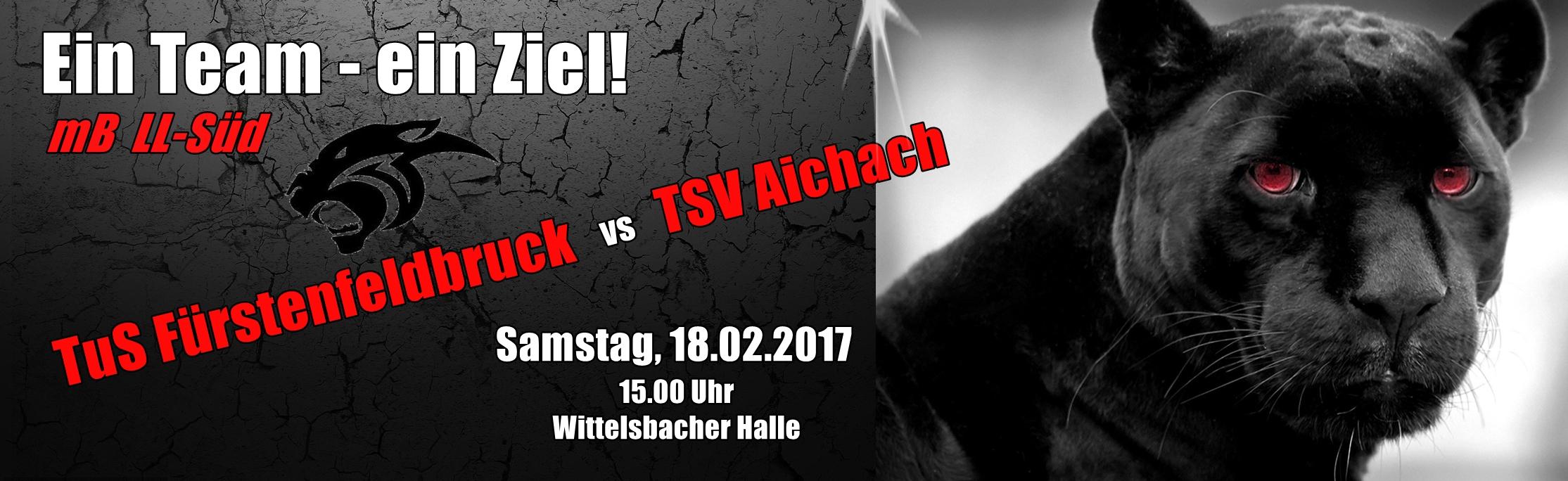 Banner Spiel Aichach - 18.02.2017